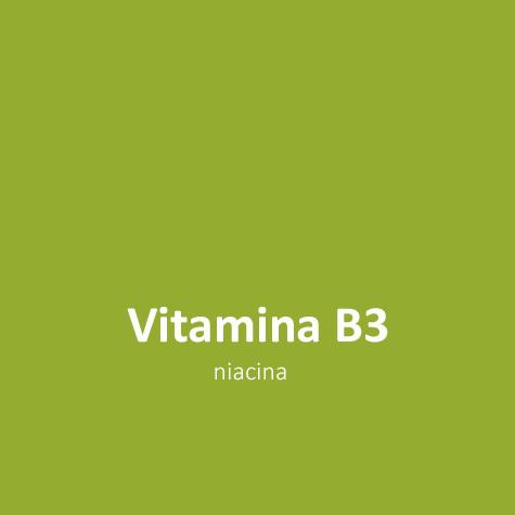 Vitamina B3 L triptófano induce a la calma en perros y gatos