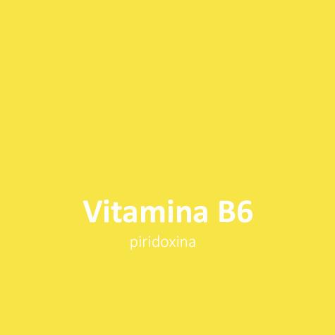 Vitamina B6 L triptófano induce a la calma en perros y gatos